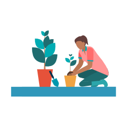Person tending houseplants