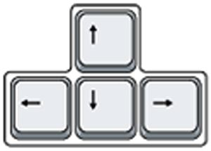 The arrow keys
