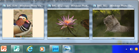 Windows photo viewer small view