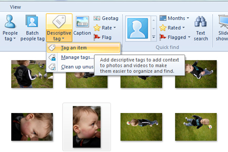 Windows live photo gallery descriptive tag