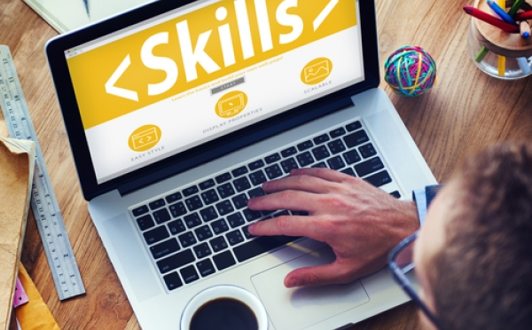 What price for digital skills?
